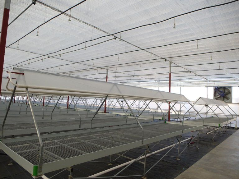 ULMA Agrícola and UNIDO install high-tech greenhouses in Mexico
