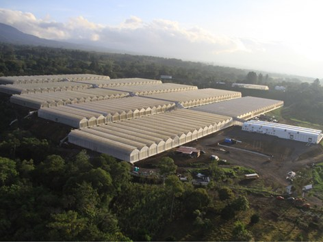 ULMA Agrícola builds the largest paprika pepper greenhouse factory in Latin America